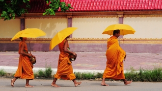 Journey Through Cambodia and Southern Vietnam