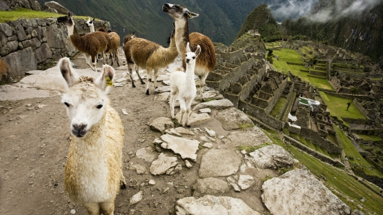 The Classic Inca Trail