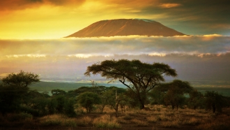 Arusha + Kilimanjaro Trek: Machame Route (Group Departure)