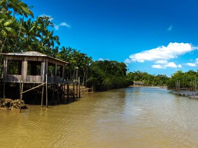 Ilha de Marajo - Belem
