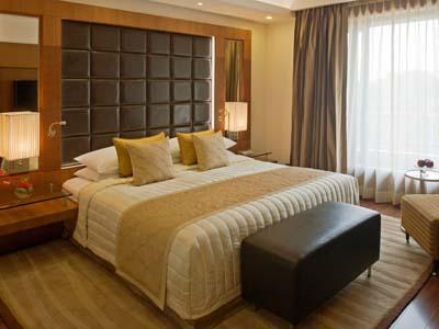 Radisson Blu Plaza Delhi Airport Hotel