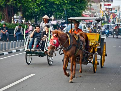 Tanjung Puting - Pangkalanbun - Semarang - Yogyakarta