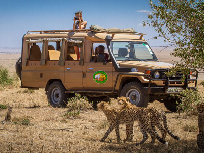 Amboseli National Park - Masai Mara