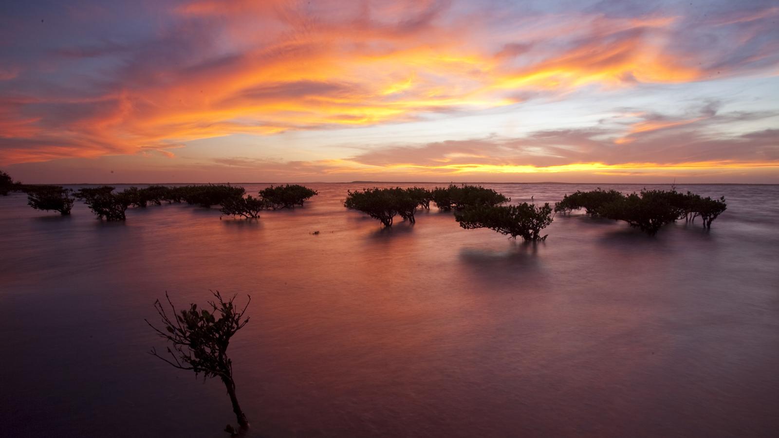 Baja Self Drive: Marine World