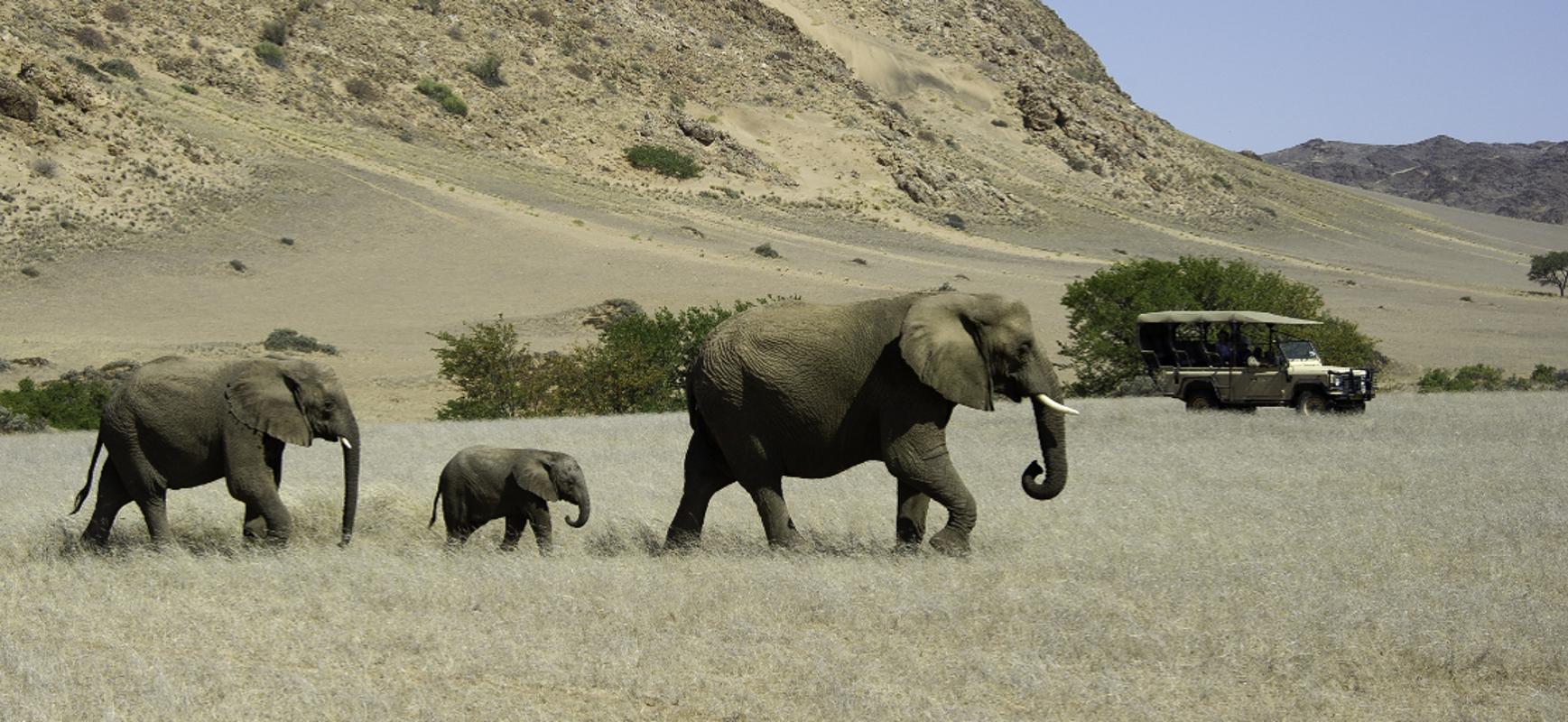 Tours to Namibia