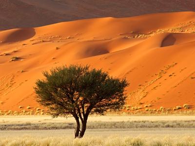 Windhoek Arrival - Namib Rand
