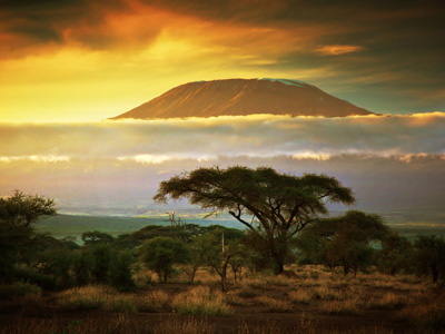 Arusha - Kilimanjaro Trek