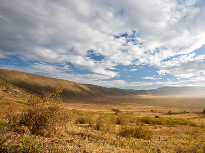 Crater Highlands - Ngorongoro