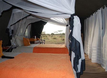 Ngorongoro - Southern Serengeti
