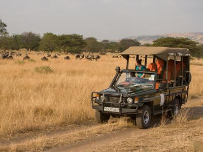 Dar es Salaam Arrival - Ruaha National Park