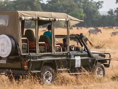 Tarangire - Ngorongoro