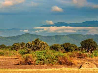 Queen Elizabeth Park: Game Viewing Safari